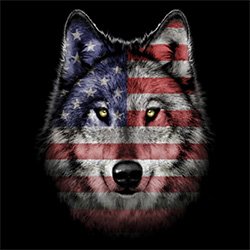 Wholesale T Shirts, Bulk T-Shirts, Wolf, Patriotic, Online at Cheap Price, Discount - MSC Distributors