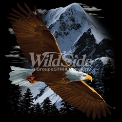 T Shirts Hats Wholesale Bulk Supplier Native American - p-61175-16140-13x14-flying-eagle-over-snow-mountain