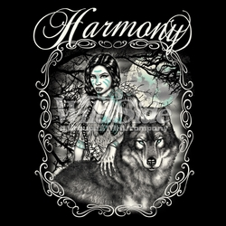 T Shirts Hats Wholesale Bulk Supplier Native American - p-70933-16918-14x18-harmony-indian-girl-wolf