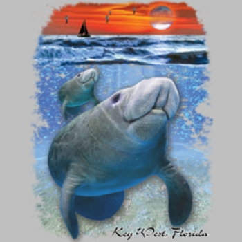 Men's Funny Sealife Fishing Vacation T Shirts Suppliers Wholesale in Bulk - 6464-v2_o_rp-400x400