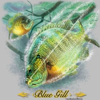 Men's Women's Adult Wholesale Clothing - Custom Personalized Blue Gill T Shirts Suppliers Wholesale in Bulk - 6967_o_rp-400x400