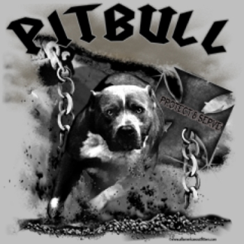 Men's Women's Adult Pitbull T Shirts Suppliers Wholesale in Bulk -6989_o_rp-400x400