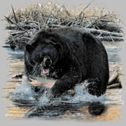 Men's Women's Adult Wholesale Clothing - Custom Personalized Bear T Shirts Suppliers Wholesale in Bulk -7223_o_rp-400x400