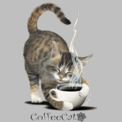 Men's Women's Adult Wholesale Clothing Apparel -  Bulk, Custom Personalized Coffee Cat T Shirts Suppliers Wholesale in Bulk -7231_o_rp-400x400