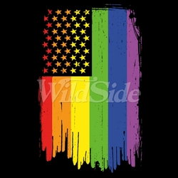 Gay T-Shirts, Tees, Hats, Patriotic, American Flag, Cheap, Online, Wholesale - 19239