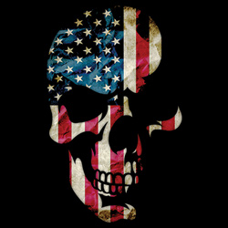 Patriotic Skull - Wholesale Clothing, Hats, Caps, Blank Apparel, Bulk T-Shirts, Cheap Polo Shirts, Supplier - MSC Distributors