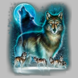 Wholesale Clothing, Wolf T Shirts Bulk Graphic Printed Suppliers - 10540D0