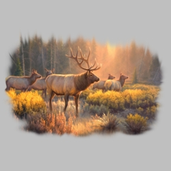 Wholesale Clothing, Elk Wildlife T Shirts Wholesale Bulk Graphic Printed Suppliers - 17762HL2