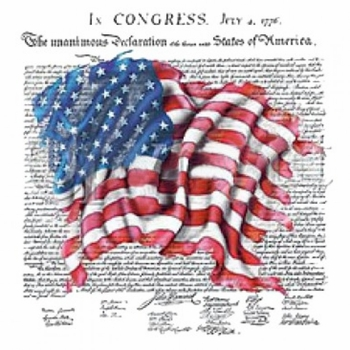 Patriotic Declaration of Independence - Wholesale Clothing, Hats, Caps, Blank Apparel, Bulk T-Shirts, Cheap Polo Shirts, Supplier - MSC Distributors