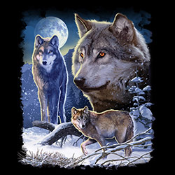 Clothing Apparel T-Shirts Hats Wholesale Bulk Animal Wildlife Buy Cheap Wholesalers Suppliers Wolf - MSC Distributors - 21658D2-1