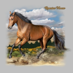 Men's Women's Adult Horse T Shirts Suppliers, Apparel, Wholesale, Gildan, Hoodies, Sweatshirts, Big and Tall, Long Sleeve, Short Sleeve, Men's, Ladies, Kid's - 6053_o_rp-400x400