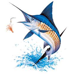 Wholesale Fishing and Boating Hats T-Shirts -07355HL2-1