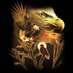 MSC Distributors : Shop American Bald Eagle T-Shirts Online Bulk