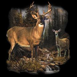 MSC Distributors : Shop Deer T-Shirts Online Bulk