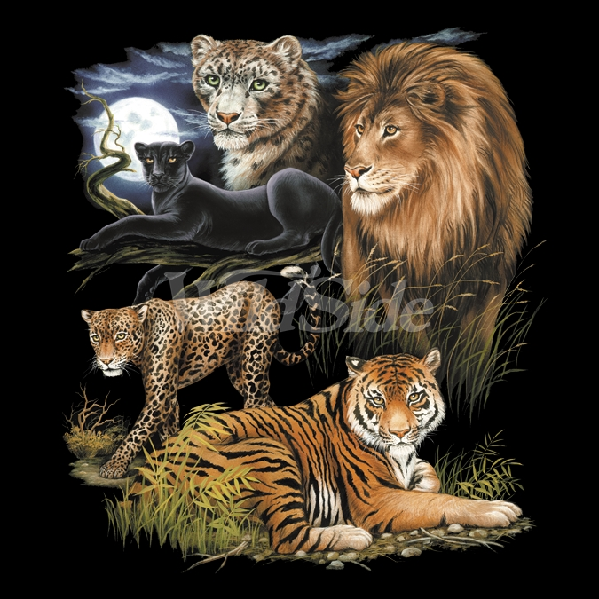 Animal t shirts wildlife t shirts wholesale t shirts for Wildlife t shirts wholesale