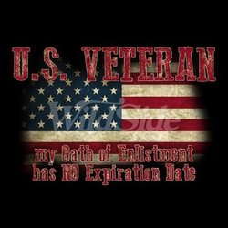 Patriotic T Shirt Suppliers USA Wholesale Gildan U.S. Veteran - MSC Distributors