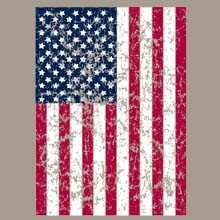 Wholesale Patriotic T Shirts and Hats, Wholesale Clothing and Apparel - 21514