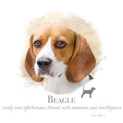 Wholesale Apparel Bulk Cheap Discount BEAGLE T-Shirts, Clothing - 17396HL4-2T - MSC Distributors