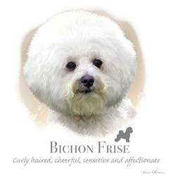 Wholesale Apparel Bulk Cheap Discount BICHON FRISE T-Shirts, Clothing - 17397HL4-2T