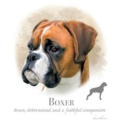 Wholesale Pet Lovers T-Shirts Suppliers - BOXER 17480HL4-2T