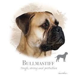 Wholesale Pet Lovers T-Shirts Suppliers - BULL MASTIFF 17481HL4-2T