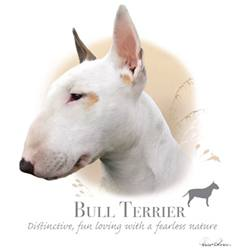 Wholesale Pet Lovers Dog Best T-Shirts Suppliers - BULL TERRIER 17476HL4-2T