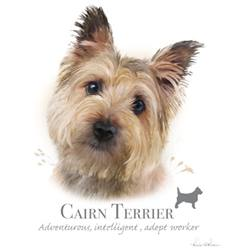 Wholesale Pet Lovers T-Shirts Suppliers - CAIRN TERRIER 17482HL4-2T