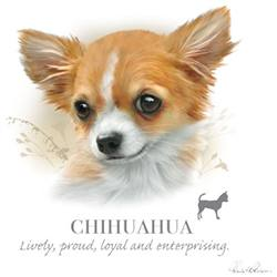 Wholesale Pet Lovers T-Shirts Suppliers - CHIHUAHUA 17483HL4-2T