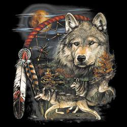 MSC Distributors : Shop Native Wolf T-Shirts Online Bulk