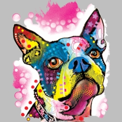 Wholesale Products - Neon T Shirts Graphic Funny Clothing in Bulk - 19036NBT2
