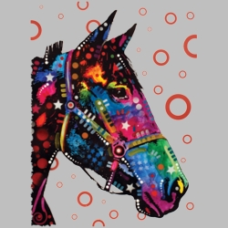 Wholesale Products - Horse Equestrian Neon T Shirts Graphic Funny Clothing in Bulk - 19045NBT2