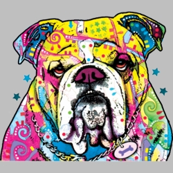 Wholesale Products - Neon T Shirts Graphic Funny Clothing in Bulk - 19053NBT2