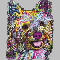 Wholesale Products - Neon T Shirts Graphic Funny Clothing in Bulk - 19056NBT2