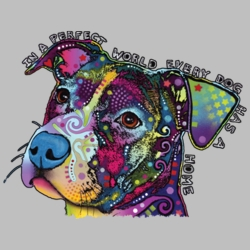 Wholesale Products - Neon T Shirts Graphic Funny Clothing in Bulk - 20014NBT4
