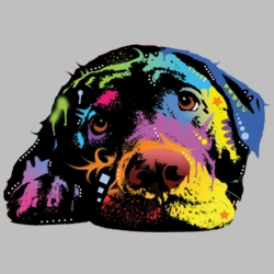 Wholesale Products - Neon T Shirts Graphic Funny Clothing in Bulk - 20127NBT4