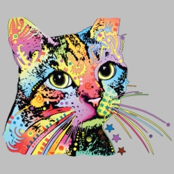 Wholesale Products - Neon T Shirts Graphic Funny Clothing in Bulk - 20138NBT4