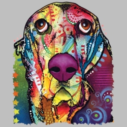 Wholesale Products - Neon T Shirts Graphic Funny Clothing in Bulk - 20140NBT2
