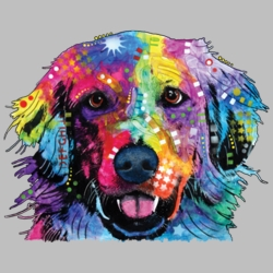 Wholesale Products - Neon T Shirts Graphic Funny Clothing in Bulk - 20142NBT4