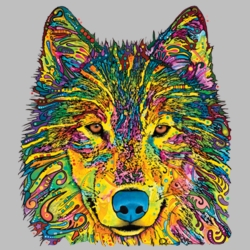 Wholesale Products - Neon T Shirts Graphic Funny Clothing in Bulk - 20143NBT2