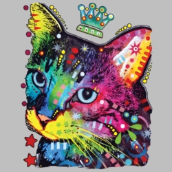 Wholesale Products - Neon T Shirts Graphic Funny Clothing in Bulk - 20152NBT2