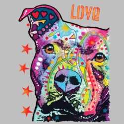 Wholesale Products - Neon T Shirts Graphic Funny Clothing in Bulk - 20153NBT2