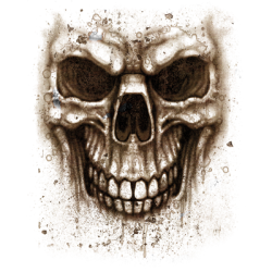 Skull T-Shirts Wholesale Skull T Shirts - MSC Distributors
