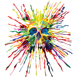 Wholesale Skull Paint T Shirts in Bulk, Clothing & Apparel - 21569NBT2