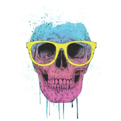 Wholesale Skull Sunglasses T Shirts in Bulk, Clothing & Apparel - 21611HL2