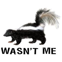 Skunk T Shirts, Funny T Shirts Cheap Online Sale At Wholesale Prices - Wasn't Me - 08991HL4