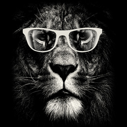 Wholesale Lion Glasses Funny Animal T Shirts -19404D1-1
