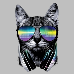 Wholesale Products - Cat Sunglasses Neon T Shirts Graphic Funny Clothing in Bulk - 19950NBT2