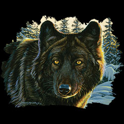 Wholesale - Bulk Native American Wolf T Shirts Clothing - MSC Distributors