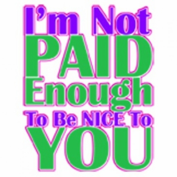 Wholesale T Shirts, Bulk T Shirts - Not Paid To Be Nice Neon a10031f