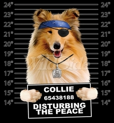 Wholesale Collie T Shirts Online at Cheap Price, Discount Collie T Shirts - 19180 Collie
